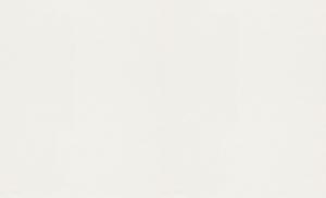 rasch Tapete 342406 - Großrolle Profivlies | 25 m × 1,06 m