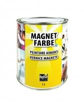 MagPaint MagnetFarbe | dunkelgrau + überstreichbar | 1,0 Liter