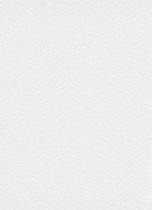 erismann Tapete 3900-01 - Großrolle/Vlies mit Struktur | überstreichbar