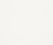 erismann Tapete 3328-1 - Großrolle Makulaturvlies 120 gr.| 25 m × 1,06 m