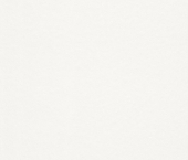 erismann Tapete 3361-01 - Großrolle Glasvlies 130 gr.| 50 m × 1,00 m