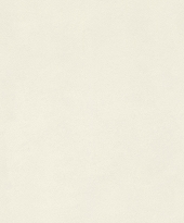 rasch Tapete 418613 - Vliestapete Uni