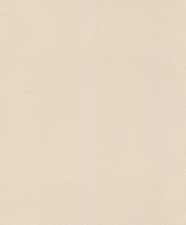 rasch Tapete 418644 - Vliestapete Uni