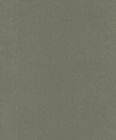 rasch Tapete 418668 - Vliestapete Uni