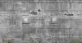 rasch Wandbild 445503 - 5,58 x 3,00m